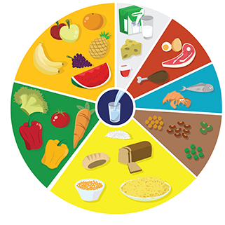 roda-alimentos-nutri_reinos